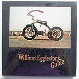 William Egglestons guide