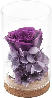 Best Gifts for Women,Handmade Preserved Flower Rose,Upscale Immortal Flowers,Gifts For Women,Her,Girls,Sister,Mom,Mothers Day,Valentines Day, Anniversary, Birthday,Wedding (Purple Rose)