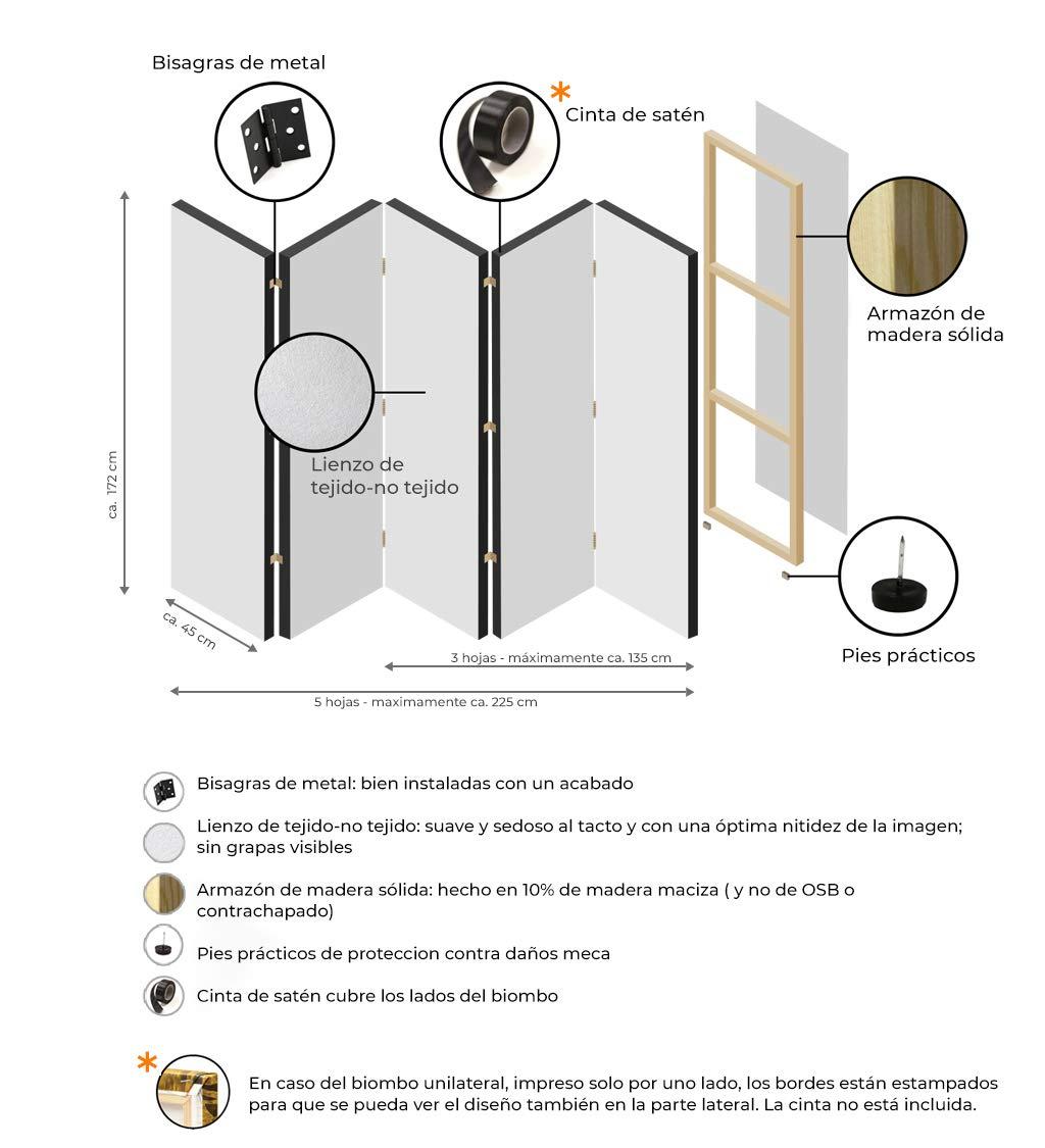 murando Biombo Playa Mar Tropical 135x172 cm de Impresi�n Bilateral en el Lienzo de TNT Foto Biombo Decorativo para Interiores c-B-0362-z-b: Amazon.es: Hogar