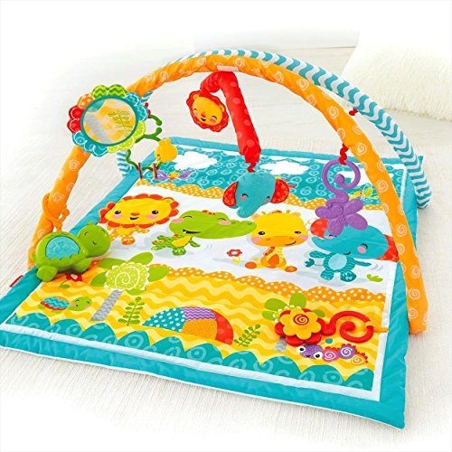Fisher-Price Wigglin' Play Gym by Fisher-Price