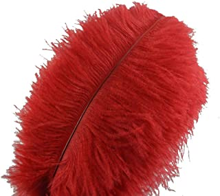 Sowder 10pcs Ostrich Feathers 12-14inch(30-35cm) for Home Wedding Decoration(red)