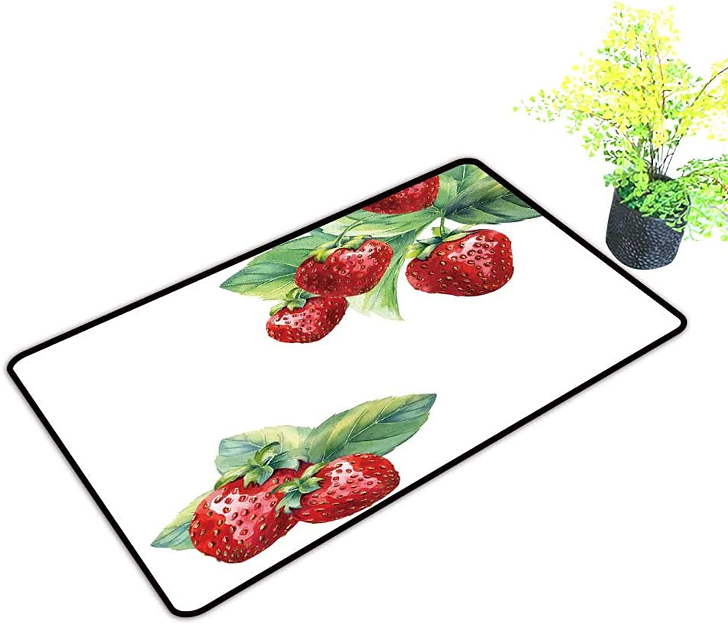 Gmnalahome Super Absorbs Mud Doormat Strawberry on White backgroun No Odor Durable Anti-Slip W39 x H19 INCH