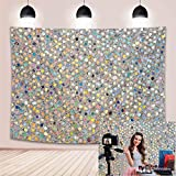 BINQOO 7xft Dreamy Colorful Bling Bokeh (Not Glitter) Backdrop Stylish Silver Abstract Sequin Photography Background YouTube Makeup Birthday Carnival Party Photo