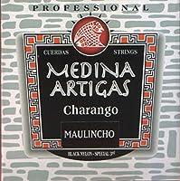 ワライチョ弦セット MEDINA ARTIGAS 1250 / [アルゼンチン製] 正規品新品