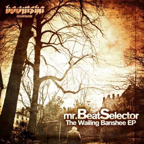 Mr BeatSelector