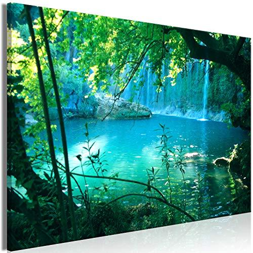murando - Bilder Natur 120x80 cm Vlies Leinwandbild 1 TLG Kunstdruck modern Wandbilder XXL Wanddekoration Design Wand Bild - Wasserfall Tropische Landschaft Dschungel c-B-0544-b-a