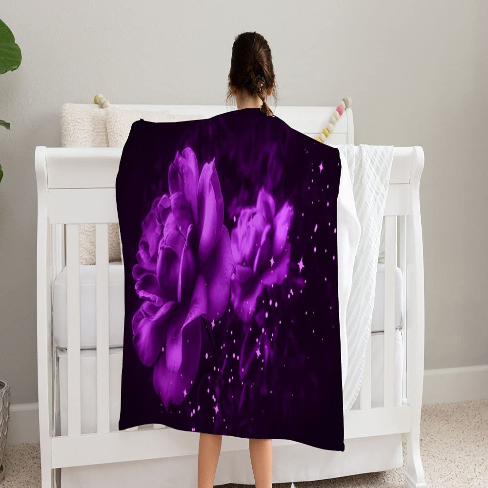 ALANCA Max 80% OFF Lilac Roses Against Limited Special Price Black Violet Baby Blanket Background