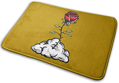 Roses in The Clouds Carpet Non-Slip Welcome Front Doormat Entryway Carpet Washable Outdoor Indoor Mat Room Rug 15.7 X 23.6 inch