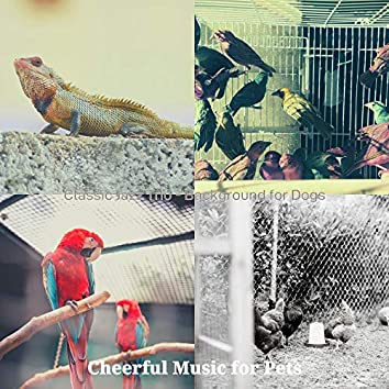 Classic Jazz Trio - Background for Dogs