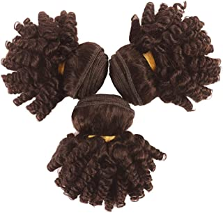 Kaibeilu Brown Funmi Human Hair Bundles Short Hairstyles Fumi Hair Aunty Bouncy Curly Afro Kinky Curly Hair Weave Spring curls Raw Hair Extensions Brown Color(F 8 10 12) inch