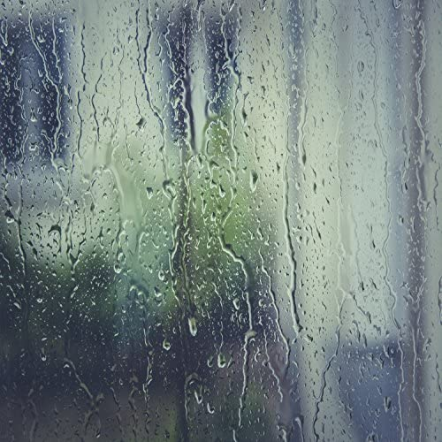 Rain Sounds|Sleep Sounds of Nature|Zen Music Garden