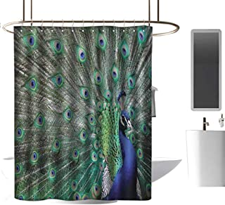 TimBeve Vintage Shower Curtain Peacock,Peacock Displaying Elongated Majestic Feathers Open Wings Picture,Navy Blue Green Pale Brown,Print Polyester Fabric Bathroom Decor Sets 47