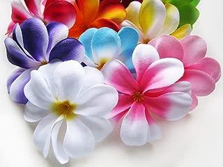 (100) Assorted Hawaiian Plumeria Frangipani Silk Flower Heads - 3