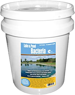 Outdoor Water Solutions PSP0132 Lake and Pond Bacteria