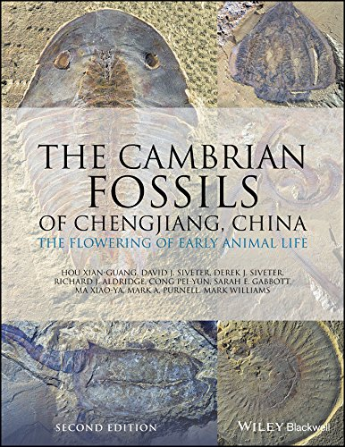 The Cambrian Fossils of Chengjiang, China: The Flowering of Early Animal Life (English Edition)
