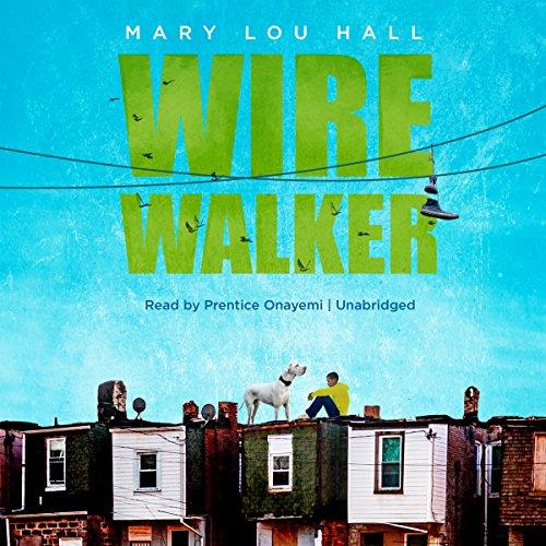 Wirewalker audiobook cover art