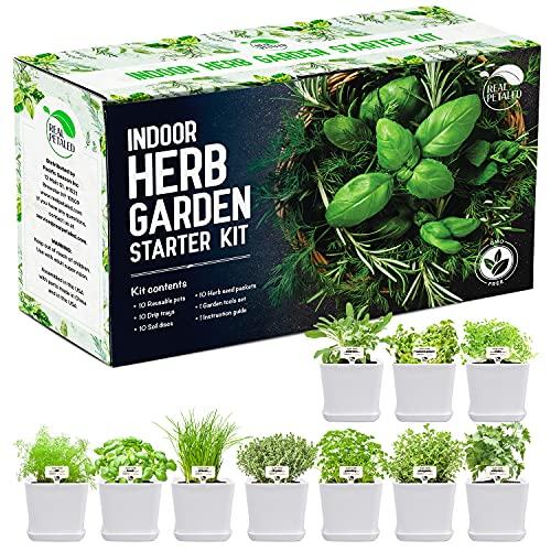 REALPETALED Indoor Herb Garden 10 Non-GMO Herbs– Complete Kitchen Herb Garden with 10 Reusable...