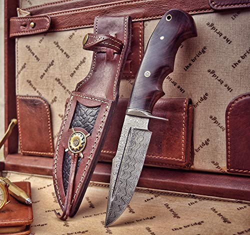 BIGCAT ROAR 10-inch Overall, Rocky, Hunting Bowie Knife - Full Tang Fixed Blade Damascus Steel - Walnut Wood Handle with Leather Sheath