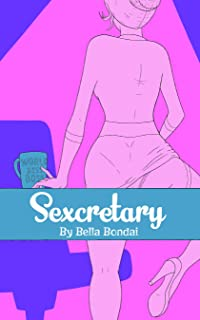 Sexcretary (The Unprofessional Professional Diaries Book 1)