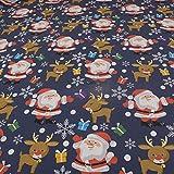 FAABRIX Kinderstoff Weihnachtsstoff Jersey Rudolph