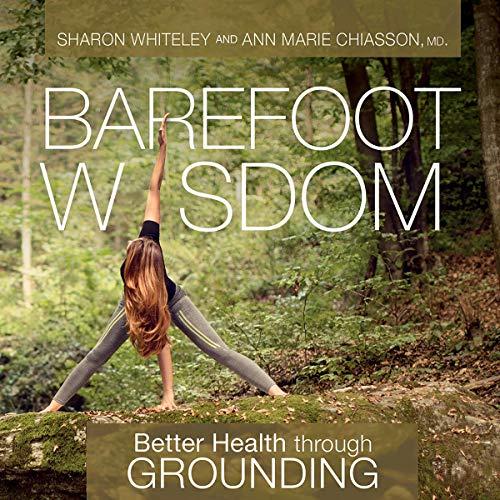 Barefoot Wisdom audiobook cover art
