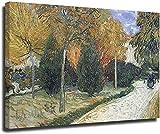 Lienzos Decorativos Sendero en el parque en Arles de Vincent Van Gogh Poster e impresiones personaje...