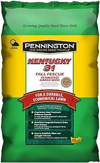 Pennington Kentucky 31 Tall Penkoted Fescue PC, 3 lb