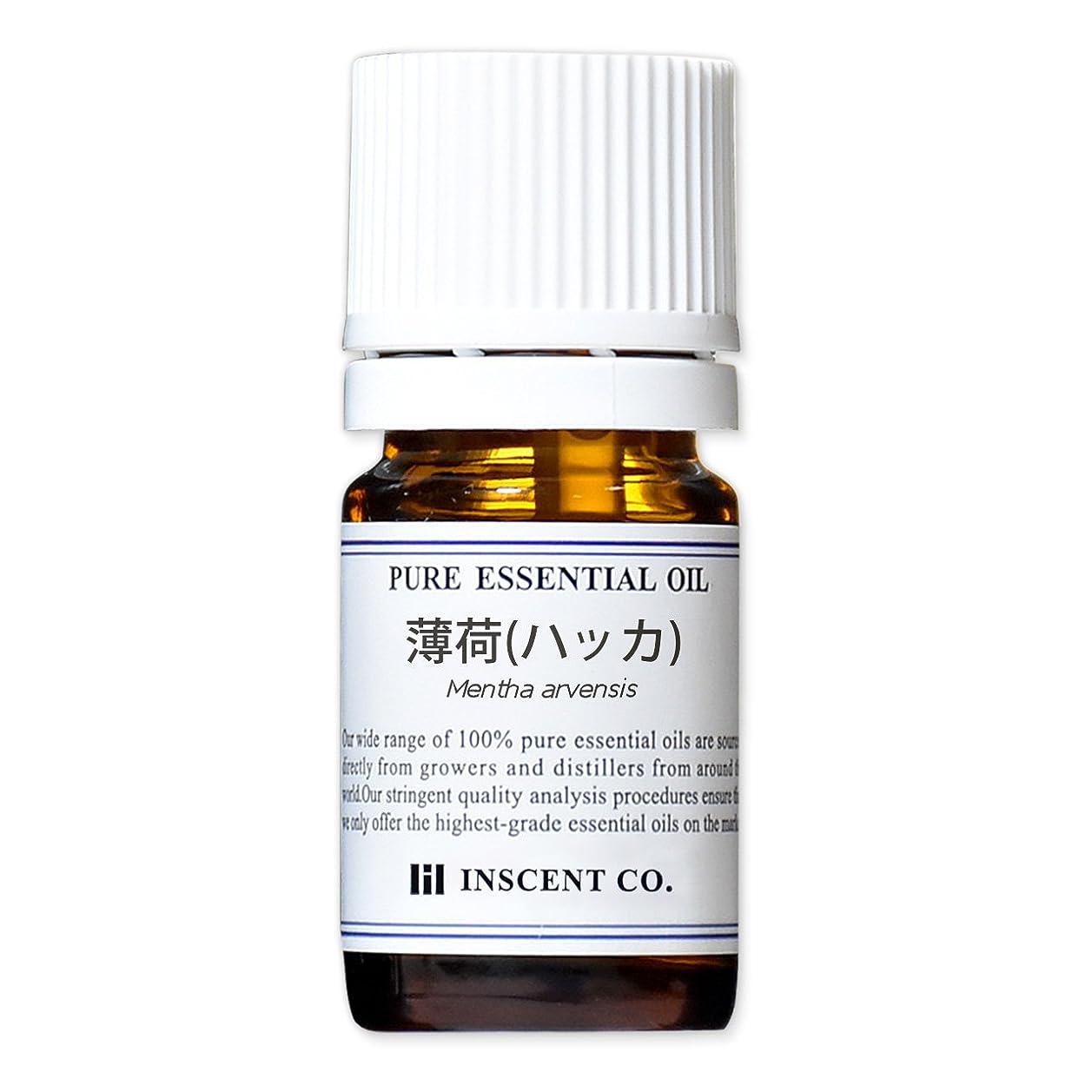 慣習ホバー鎮痛剤薄荷 (和ハッカ) (和種) 5ml インセント アロマオイル AEAJ 表示基準適合認定精油