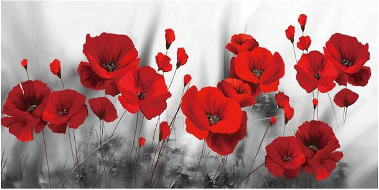 QIAOO Cheap mail order sales Fashion Canvas Art Abstract Poppy Paintings A Max 41% OFF Flower Wall