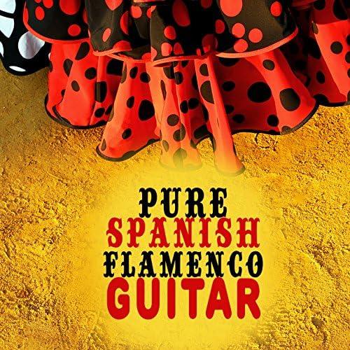 Guitarra Clásica Española, Spanish Classic Guitar, Guitarra Española, Spanish Guitar & Instrumental Guitar Music