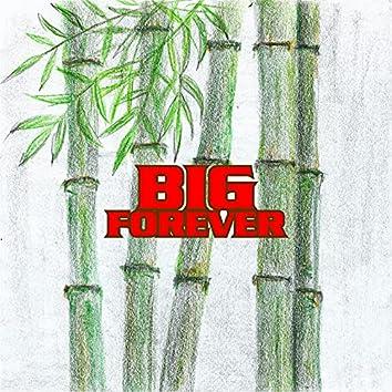 Big Forever