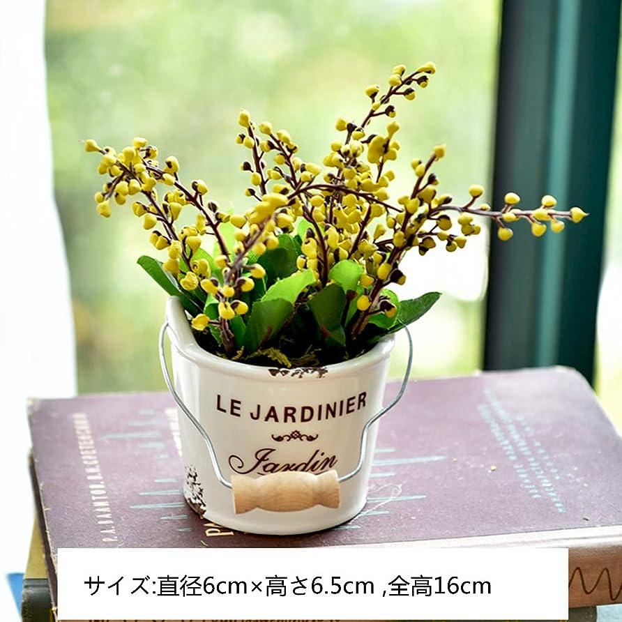 用心深いジェットオーストラリアLihou かわいい まあるい 光触媒 光触媒植物 インテリア 緑の花や植物