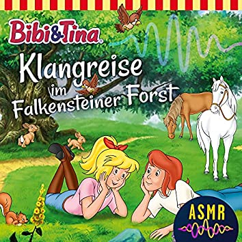 Klangreise im Falkensteiner Forst (ASMR)