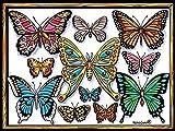 LAMINA PARA COLOREAR con caja de rotuladores. Mariposas II