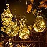 Battery Operated Hanging Lights, Homeleo LED Clear Bulb Copper String Lights, 10ft 10 Bulbs Warm White Globe LED Wire Hanging Lights for Christmas Halloween Wedding Party Indoor Outdoor Decor