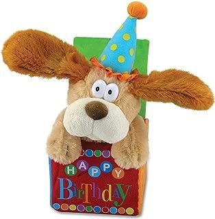Best happy birthday motion Reviews