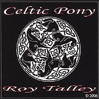 Celtic Pony