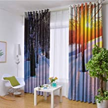 W85 x L85 Inch Apartment Decor Collection Top Energy Saving treatment Window Curtains Sunset in a Winter Park Russia Sunlight Shining Through Trees Pathway to Forest Image Room Darkening Curtains for