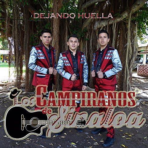 Los Campiranos De Sinaloa