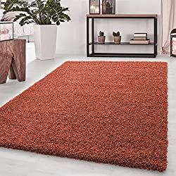 LUXURIOUS APPEARANCE: This plush carpet rug adds a pop of luxury to any space. COLOR OPTIONS: Choose from a variety of beautiful, modern colors that will really tie the room together. GREAT IN ANY ROOM: Wonderful for bedrooms, living rooms, entryways...