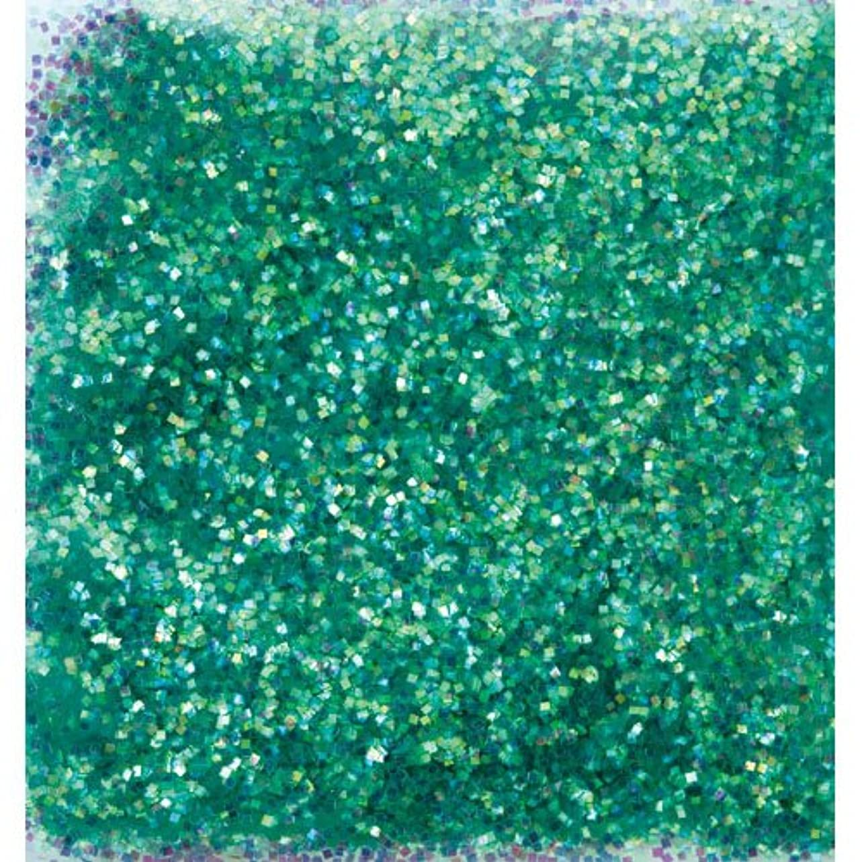 リア王腹部困ったピカエース ネイル用パウダー オーロラグリッター M #499 グリーン 1.5g