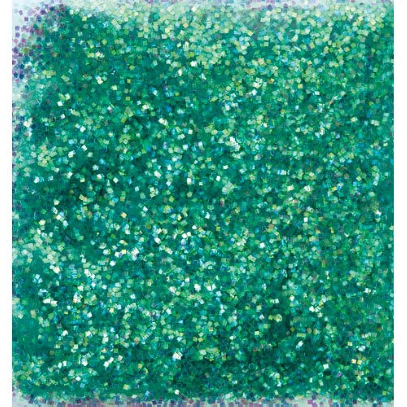 すごい排泄物風刺ピカエース ネイル用パウダー オーロラグリッター M #499 グリーン 1.5g