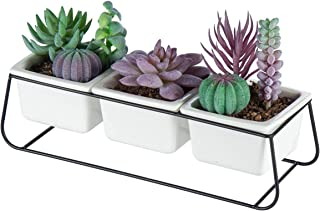 ORZ Succulent Planter Pots with Black Stand and 3 Square Ceramic Pots Decorative Small White Cactus Pots for Indoor Plants...