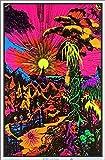 Lost Horizon Blacklight Poster - Flocked - 23' x 35'