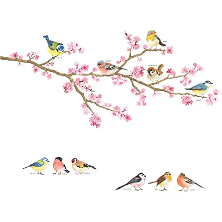 DECOWALL DWL-2015 Garden Birds Wall Stickers Wall Decals Peel and Stick Removable Wall Stickers for Kids Nursery Bedroom Living Room