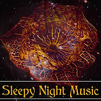 Sleepy Night Music