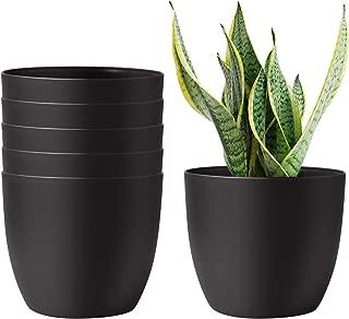 Best plastic self watering african violet pots Reviews
