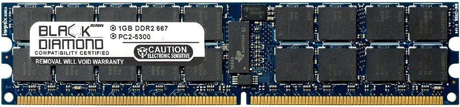 1GB RAM Memory for Sun Fire X4140 Server 240pin PC2-5300 DDR2 ECC Registered RDIMM 667MHz Black Diamond Memory Module Upgrade