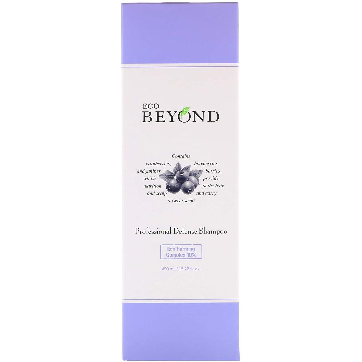 誇り遺跡露骨な[ビヨンド] BEYOND [プロフェッショナル ディフェンス シャンプー 450ml] Professional Defense Shampoo 450ml [海外直送品]