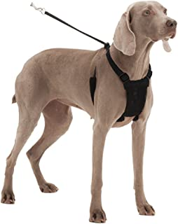 Dog Harness - No pull and No choke humane Design, Non Pulling Pet Harness with Mesh vest, Easy Step-in Adjustable Mesh Harness for control, Patented Dog Pull Control Technology by Sporn
